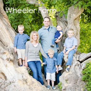 wheeler-farms
