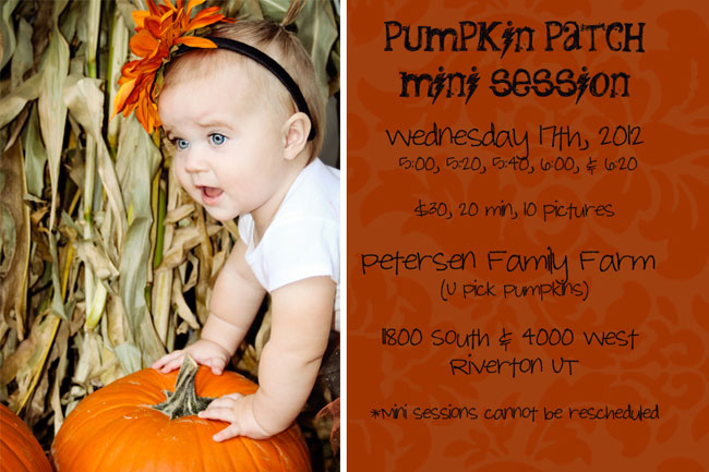 Pumpkin-Patch-Mini-Session